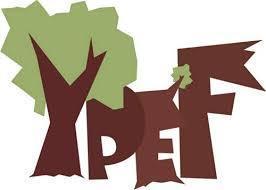 """Картинки по запросу """"картинка Національний відбір Міжнародного конкурсу """"Молодь в лісах Європи"""""""""""